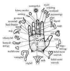kristalygyogyitas.hu kapcsolat a belső szervekkel